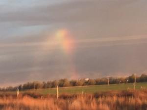 8. Rainbow Mary